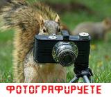 Шаг 1. Фотографируете. Фотопечать 10x15. Услуги типографии.